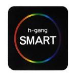 Электронные замки H-Gang